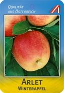 Arlet Apfel