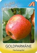 Goldparmäne Apfel