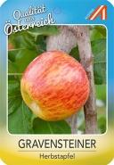 Gravensteiner Apfel