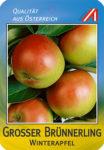 Grosser Br _Nnerling Apfel