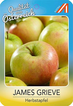 James Grieve Apfel