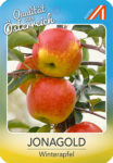 Jonagold Apfel