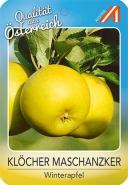 Klöcher Maschanzker Apfel