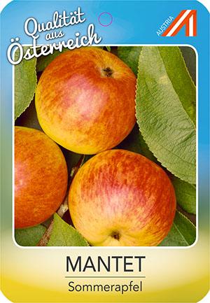 Mantet Apfel
