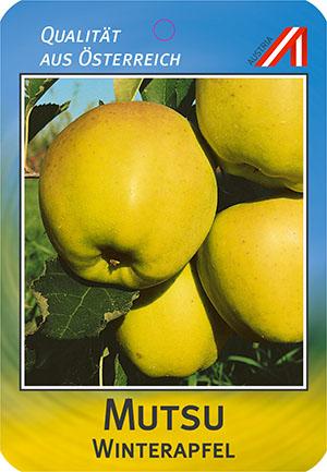 Mutsu Apfel