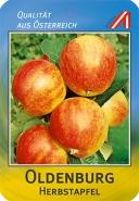 Oldenburg Apfel