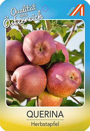 Querina Apfel