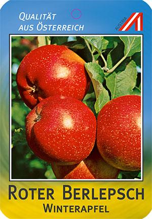 Roter Berlepsch Apfel