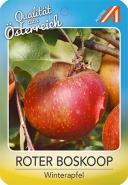 Roter Boskoop Apfel
