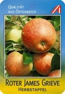 Roter James Grieve Apfel