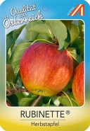 Rubinette Apfel