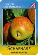 Schafnase Apfel