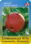 Schmidberger Reinette Apfel