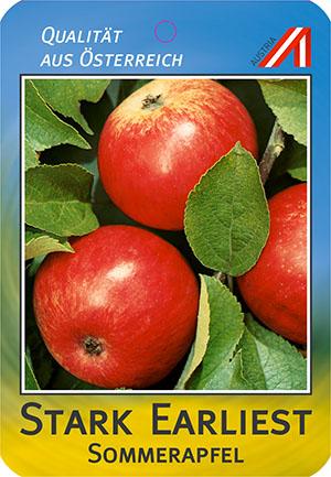 Stark Earliest Apfel