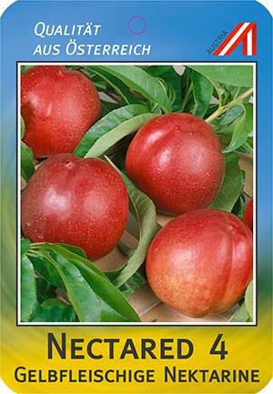 Nectared 4 Pfirsich